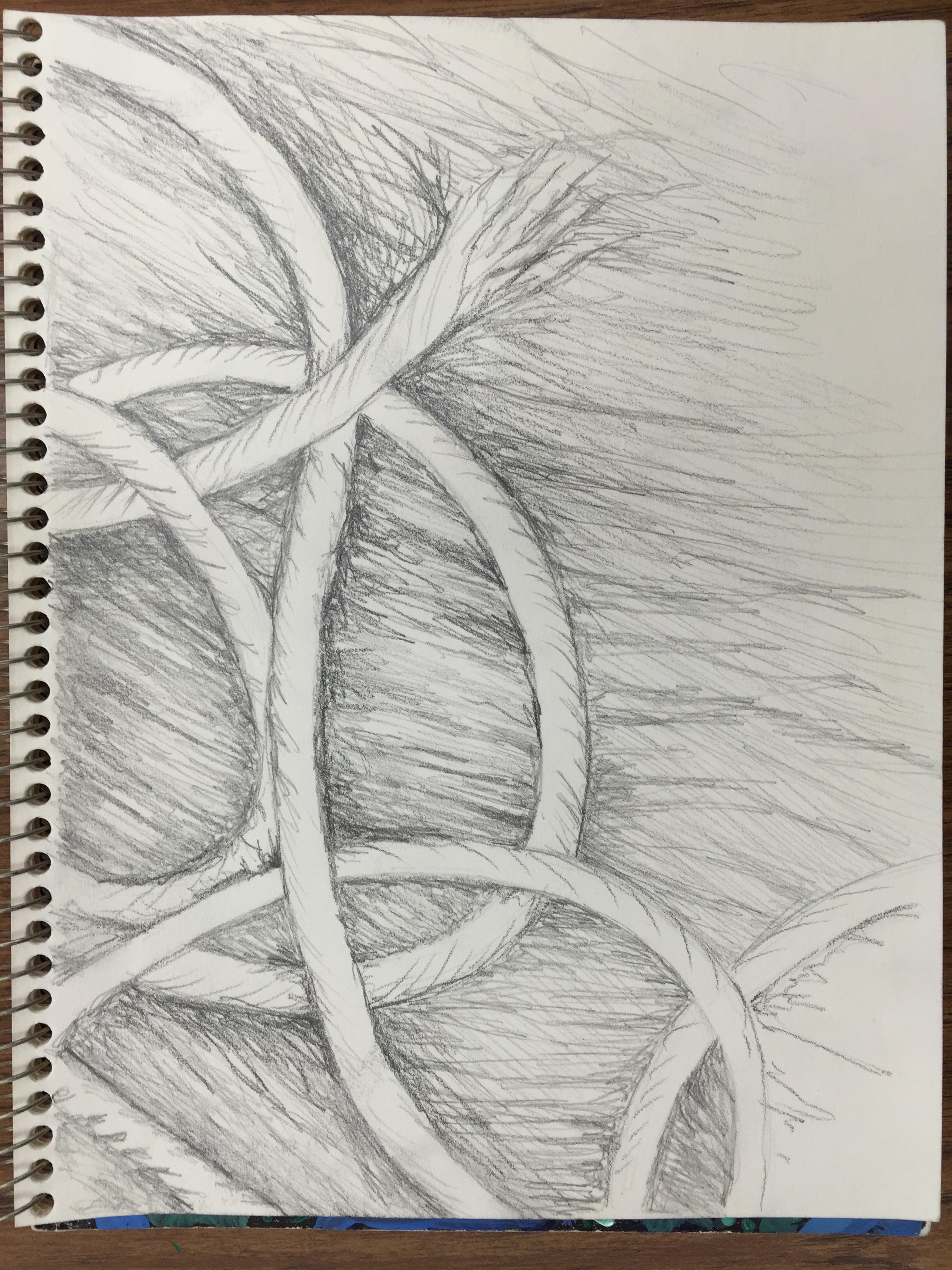 Line Drawing Yarn : The smartteacher resource yarn drawing